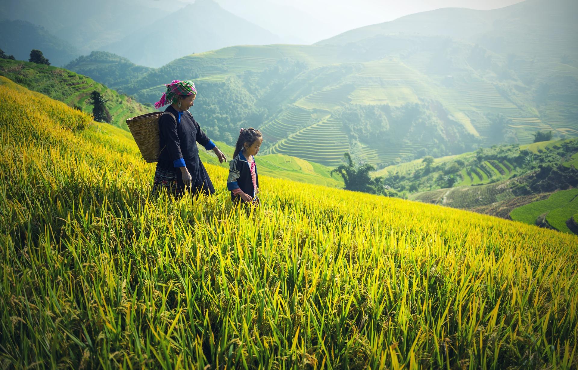 Vietnam with John Quintero