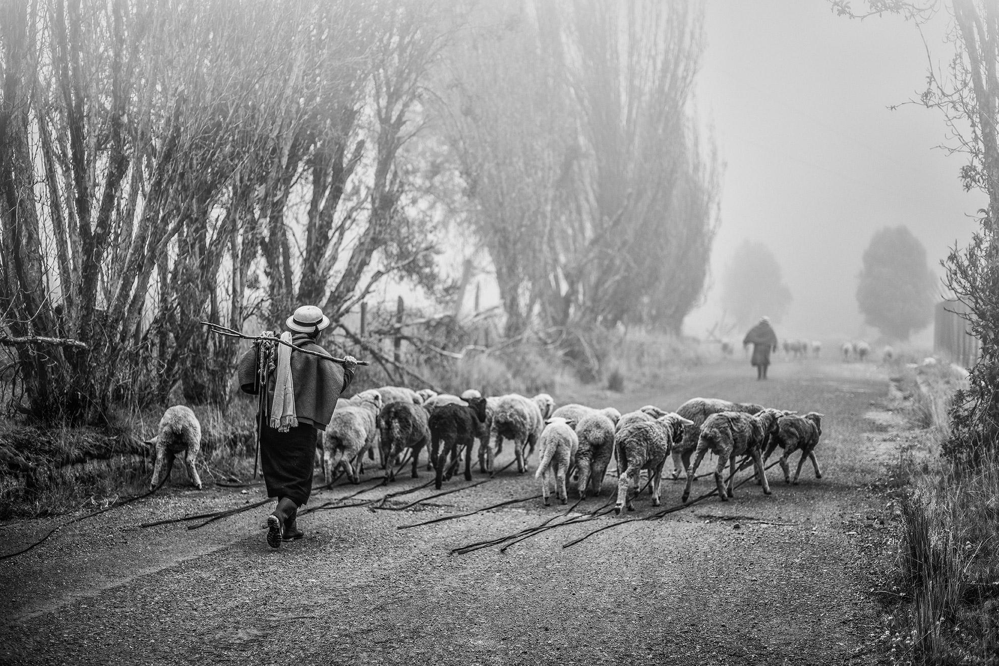 ©John Quintero
